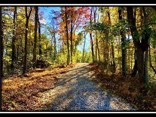 Washington Woods on Wayne : New Matamoras : Washington County : Ohio