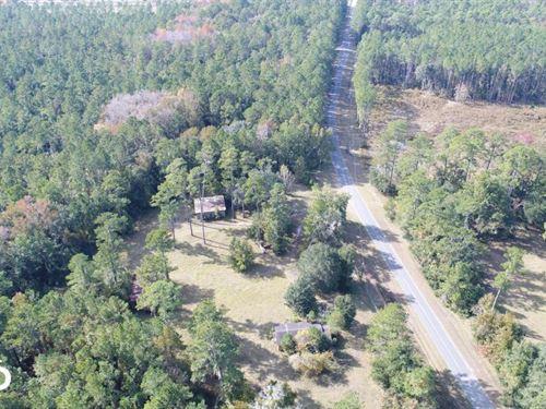 Billyville : Woodbine : Camden County : Georgia