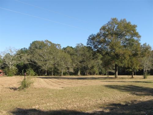 15, 83 Acres Hwy 27 South : Tylertown : Walthall County : Mississippi