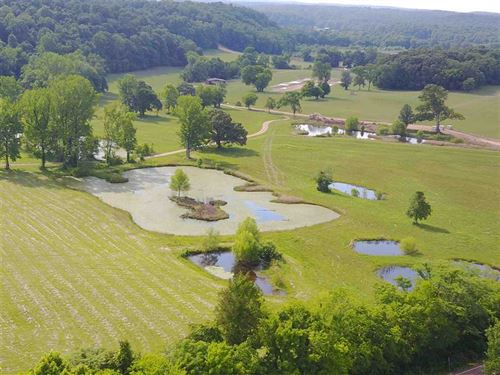 Buffalo River Paradise, 357 Acres : Waynesboro : Wayne County : Tennessee