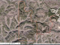 Garland Mountain / Hwy 140, 618 Ac : Waleska : Cherokee County : Georgia