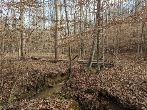 Fantastic Homesite : Coaling : Tuscaloosa County : Alabama