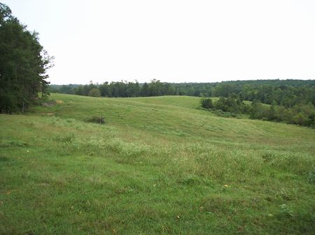 124 Acres With Lake And Creek : Newton : Mississippi