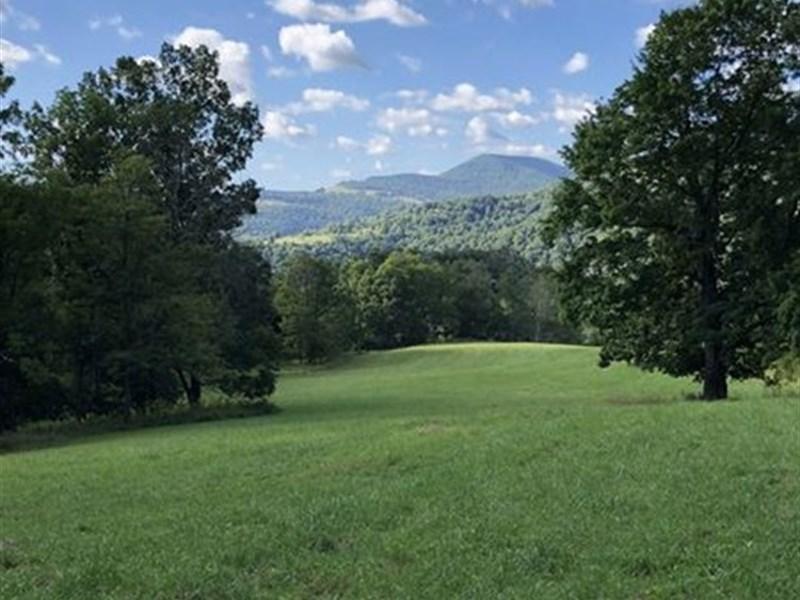 Tygart Valley Timberlands : Elkins : Barbour County : West Virginia
