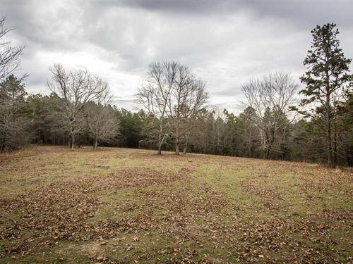 70 Acres / Creek / Trails : Shirley : Van Buren County : Arkansas