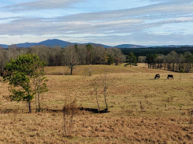105+/- Acres Pastureland Alpine, AL : Alpine : Talladega County : Alabama