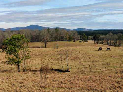 105+/- Acres Pastureland Alpine, AL : Alpine : Talladega County : Alabama
