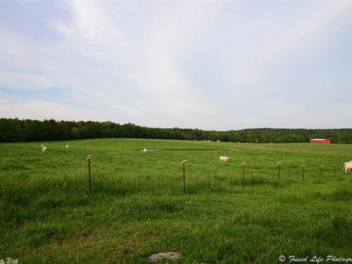 160 Acre Cattle Ranch, Ponds, Creek : Bee Branch : Van Buren County : Arkansas