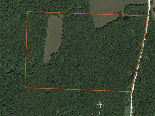 Great Looking 30 Acre Camden Count : Climax Springs : Camden County : Missouri