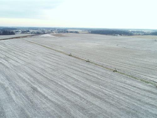 Land Auction in Indiana : Winamac : Pulaski County : Indiana