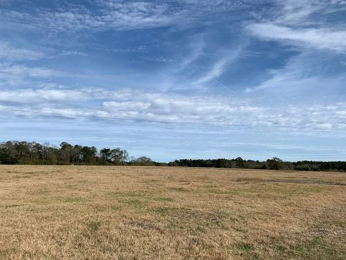 80 Acres With A Home In Walthall CO : Tylertown : Walthall County : Mississippi