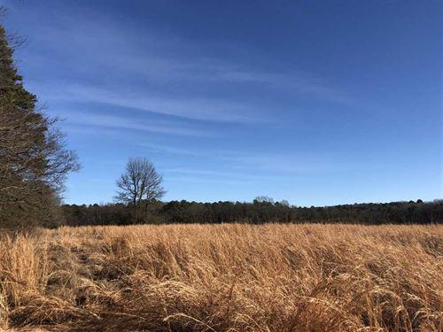 46.25 Acres Located in Bee Bran : Bee Branch : Van Buren County : Arkansas