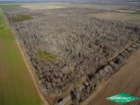 40 Ac, Hunting Tract With Great Ac : Epps : West Carroll Parish : Louisiana