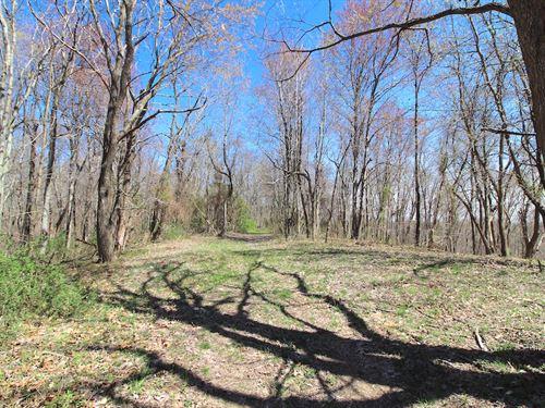 Twp Hwy 175, 61 Acres : Pomeroy : Meigs County : Ohio