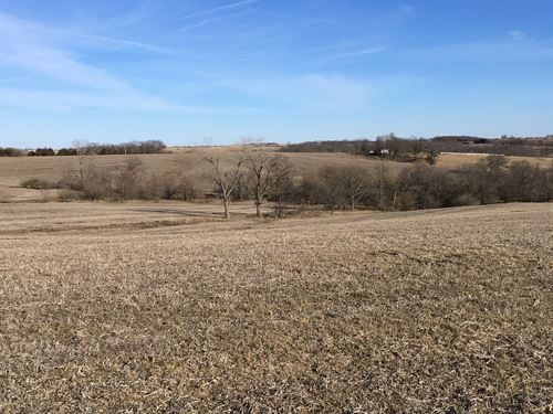 64 Acres Tillable With Great Roi : Milan : Sullivan County : Missouri