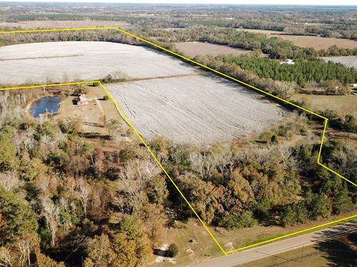 Farm Land, Slocomb Malvern Alabama : Slocomb : Geneva County : Alabama