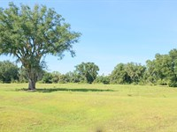 Ocala Lake Estates 62 Acres : Fort Mc Coy : Marion County : Florida