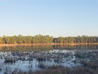 Ocala Lake Estates 130 Acres : Fort Mc Coy : Marion County : Florida
