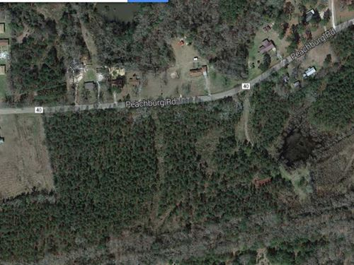 38 1/2 Acre Tract in Union Springs : Union Springs : Bullock County : Alabama