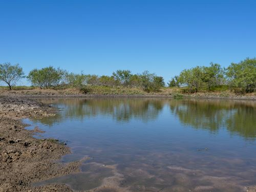 11.8 Acres Ready For Improvements : Cameron : Milam County : Texas