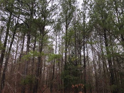 Blooming Grove Tract : Vernon : Lamar County : Alabama