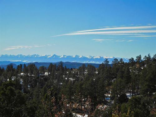 Big Views of Snow-Capped Mountains : Cripple Creek : Teller County : Colorado