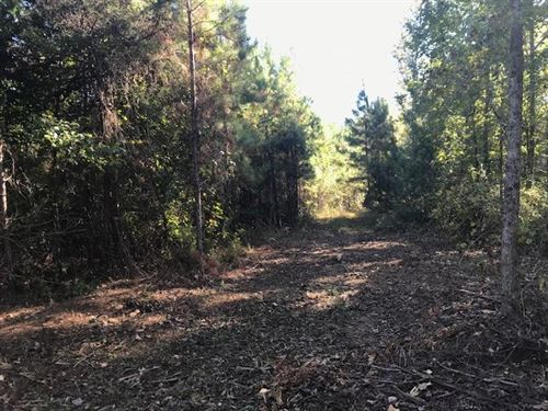 11.57 Acres Vineyard Creek Estates : Auburn : Lee County : Alabama
