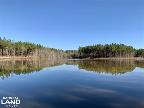 Coonipper Creek Lake Hunting And Ti : Quitman : Clarke County : Mississippi