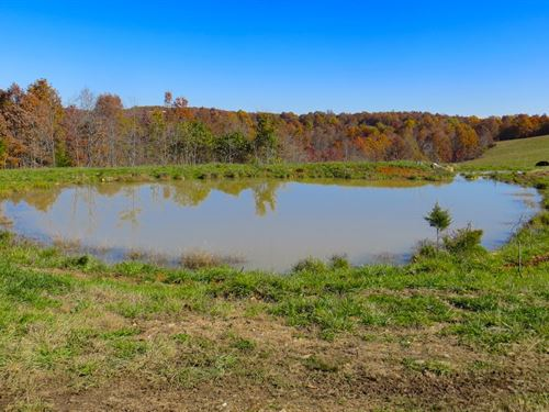 Farm For Sale in Akansas : Mammoth Spring : Fulton County : Arkansas