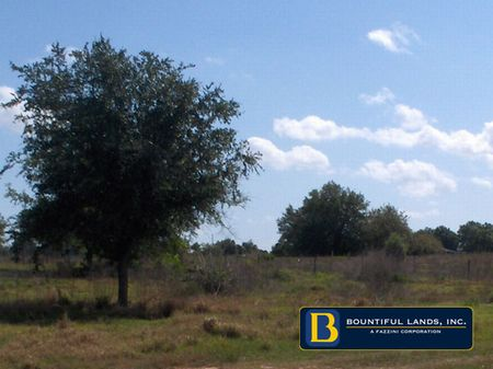 40 Acre Development Property $2.8 : Dundee : Polk County : Florida