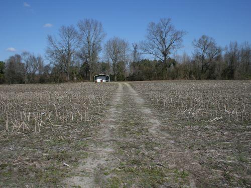 Hunsucker Tract : Wallace : Duplin County : North Carolina