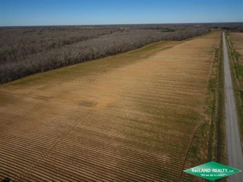 300 Ac, Irrigated Farm Land : Fort Necessity : Franklin Parish : Louisiana