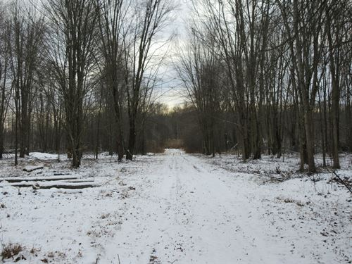 Trumbull County Recreational Land : Warren : Trumbull County : Ohio
