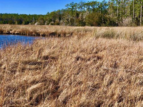 Recreational Tract Hyde County, NC : Scranton : Hyde County : North Carolina