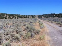 Fantastic Parcel At $299 / Month : Termo : Lassen County : California