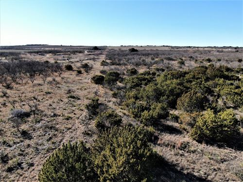 Hunt This Property Coleman County : Talpa : Coleman County : Texas