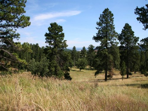 Bear Lodge Retreat : Sundance : Crook County : Wyoming