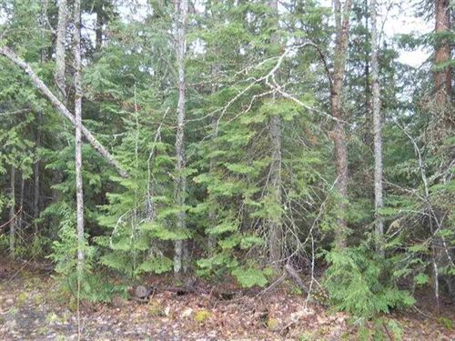 40 Acre Recreation Nestoria 1119178 : Covington : Baraga County : Michigan