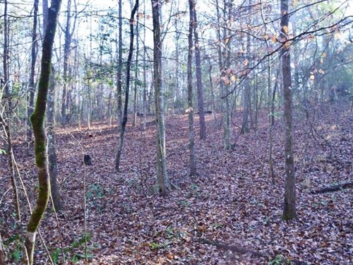 Hunting Timber Land For Sale Holmes : Holmesville : Pike County : Mississippi