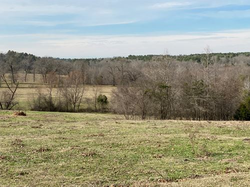 138 Acres East Dfw, Winnsboro : Winnsboro : Wood County : Texas