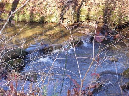113+/- Acres - $1,504/acre : Attalla : Etowah County : Alabama