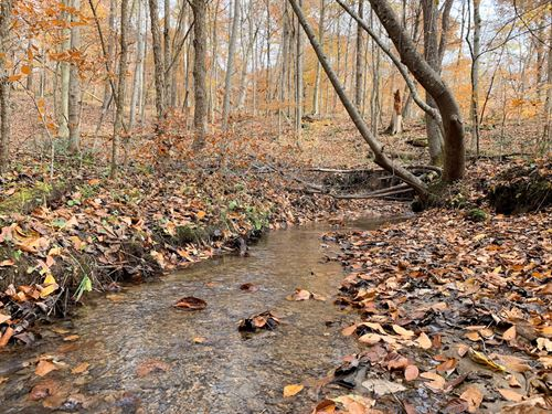 Lookout Rd, 159 Acres : Madison Township : Hocking County : Ohio