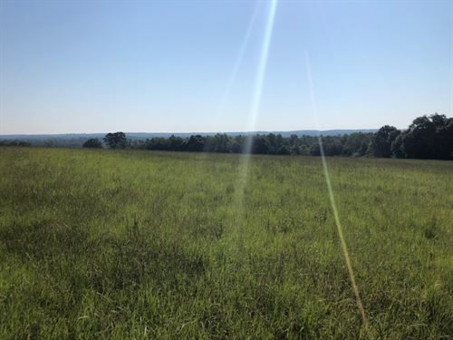 Great Views 22.5 +/- Acres : Kinston : Coffee County : Alabama