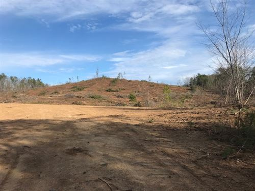 30 Acres Near Cedartown GA : Spring Garden : Cherokee County : Alabama