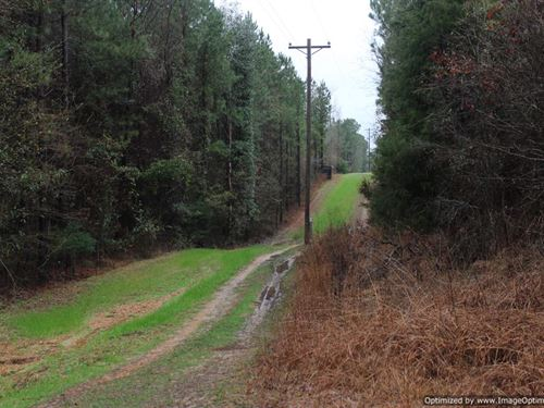 37 Ac Property With Running Creek : Crystal Springs : Copiah County : Mississippi