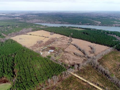 80 Acres in Kemper County, MS : Scooba : Kemper County : Mississippi