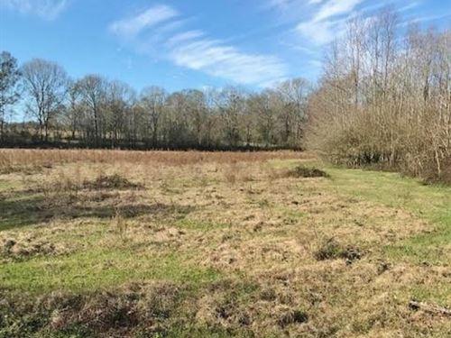 157 Acres Land For Sale Kentwood : Kentwood : Tangipahoa Parish : Louisiana