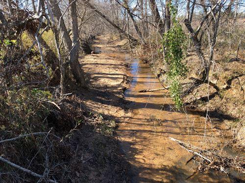 Three Creeks Tract : Washington : Wilkes County : Georgia