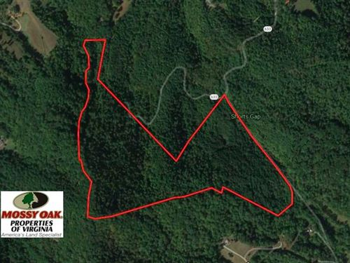 81 Acres of Hunting And Recreation : Hardy : Franklin County : Virginia