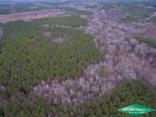 80 Ac, Timberland Lease Income, Hu : Point : Union Parish : Louisiana